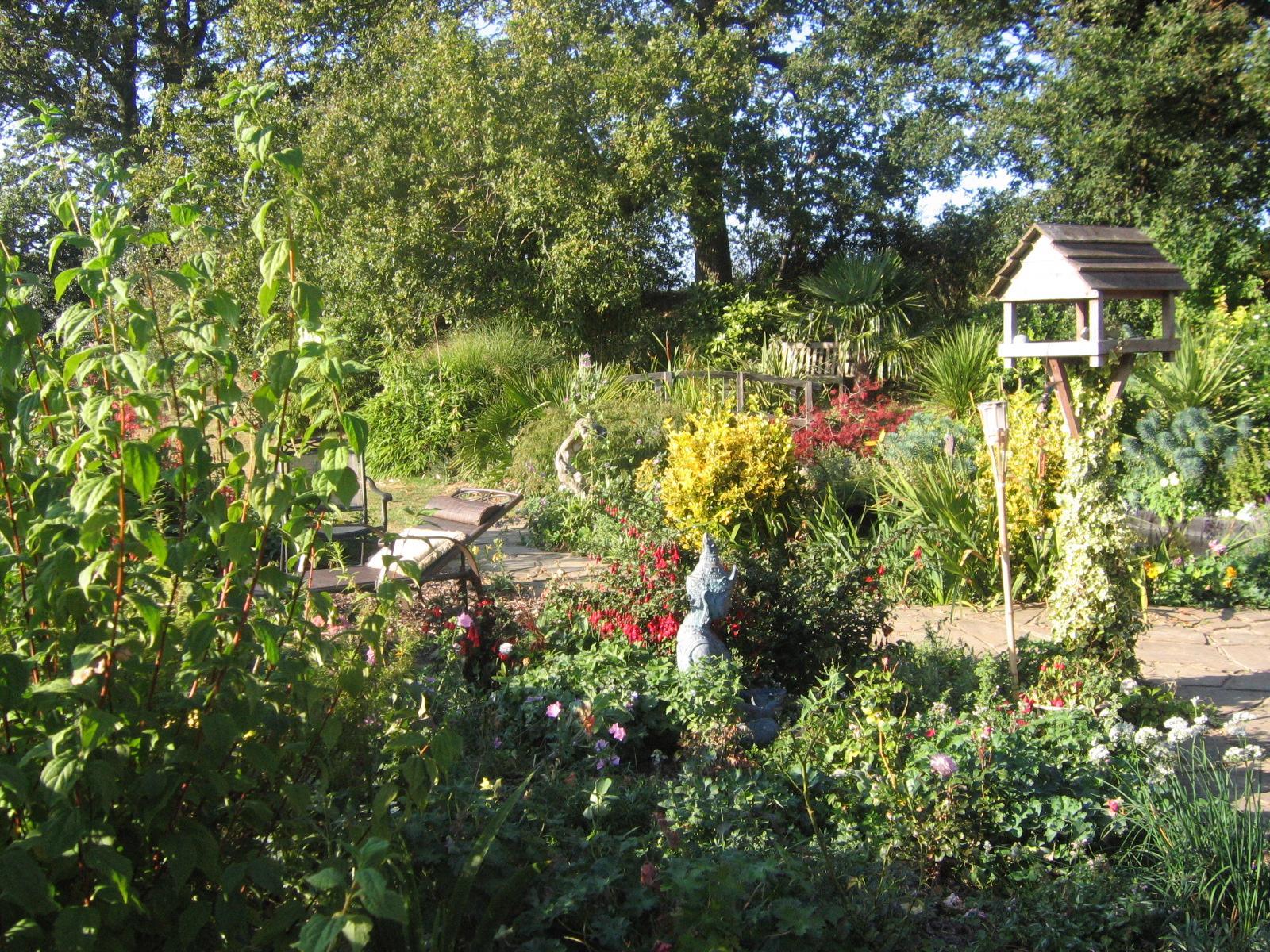 Garden 3  sept 09