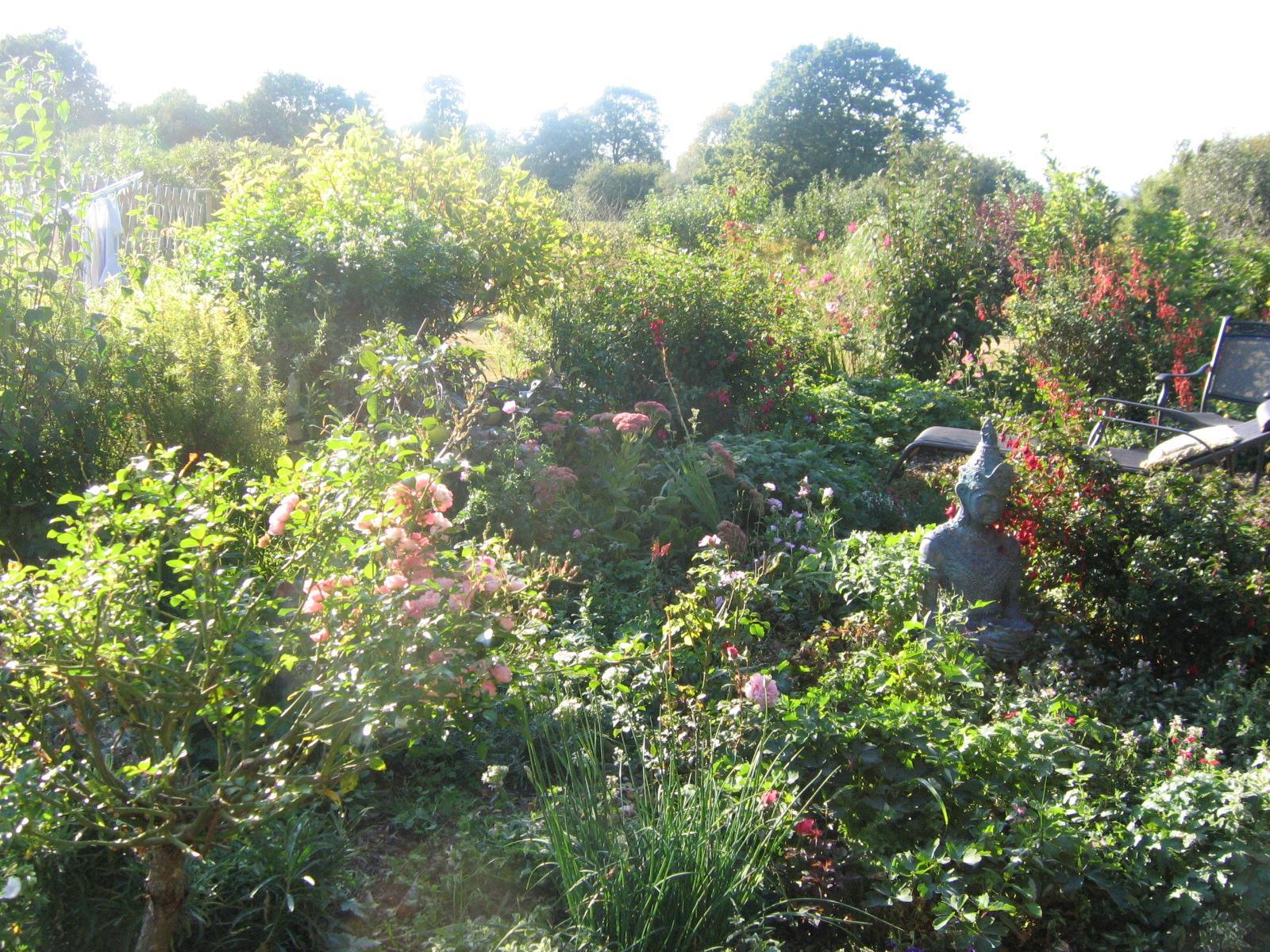 Garden Sept 09
